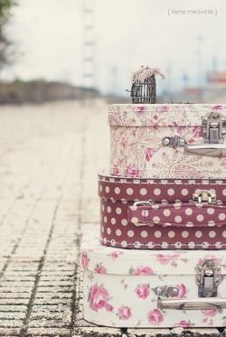 maleta, viaje, treintamasdiez