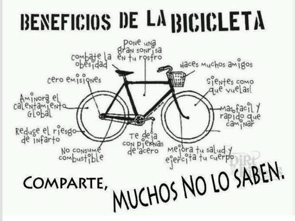 bicicleta, deporte, actividad, paseo