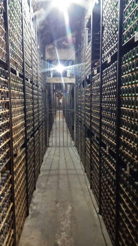 treintamasdiez-blog-de-moda vinos, bodega, Marqués de Riscal,