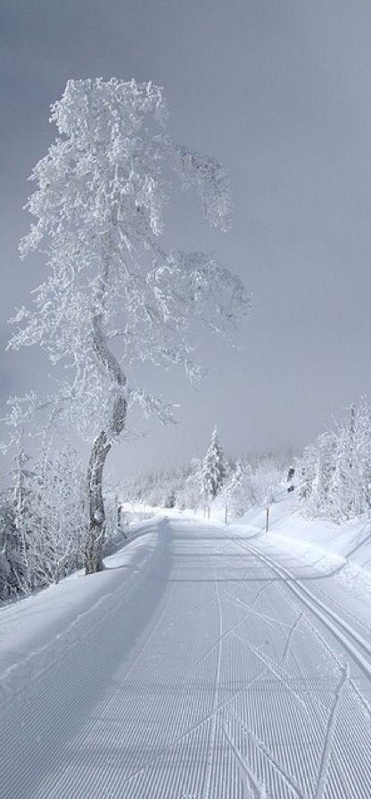 treintamasdiez-blog de moda nieve